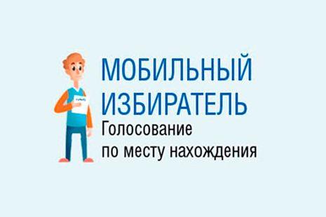 На выборах губернатора применят систему «Мобильный избиратель»
